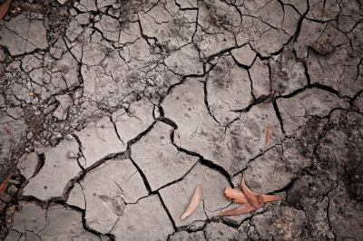 Queensland's drought aid receives a $20 million boost