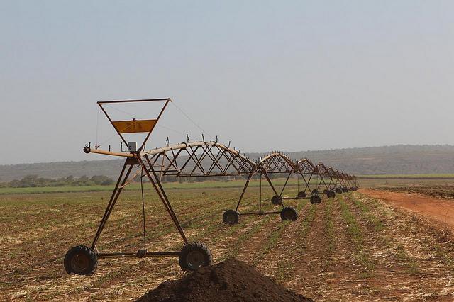 Key milestone achieved in job-creating Circular Head Irrigation Scheme