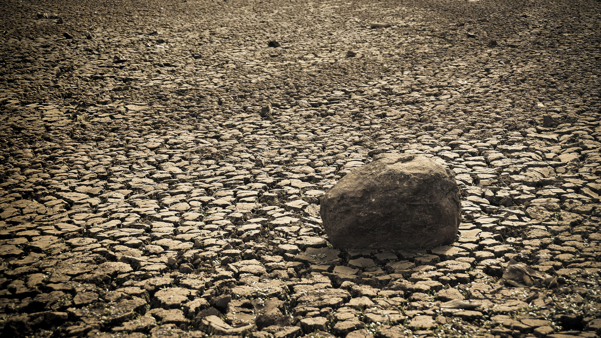 Victorian Government welcomes announced drought loans but expresses concern over eligibility